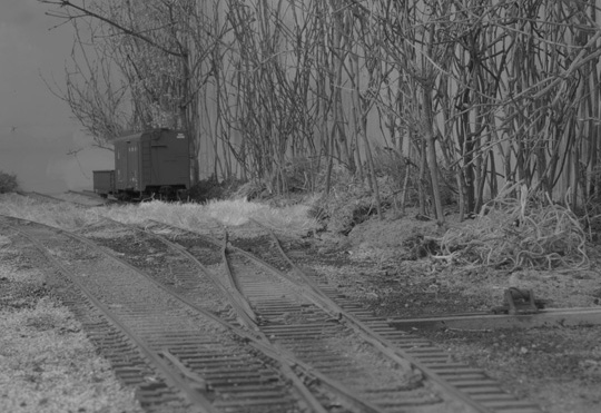 A pair of lone freight cars sit in the skeleton of a yard at Sycamore